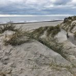 duinen3